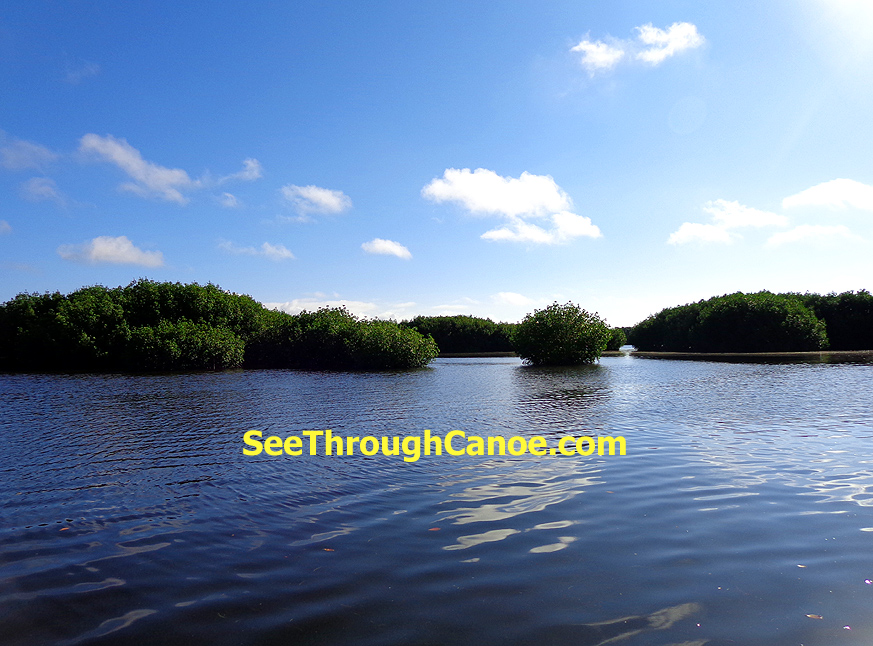 Best Places to Kayak in Central Florida  Wilderness Review